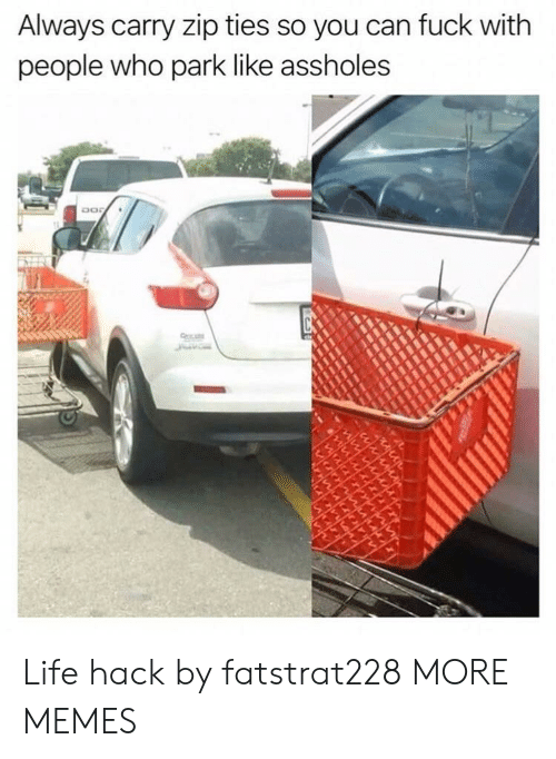 Dank, Life, and Memes: Always carry zip ties so you can fuck with  people who park like assholes Life hack by fatstrat228 MORE MEMES