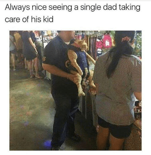 Dad, Memes, and Nice: Always nice seeing a single dad taking  care of his kid