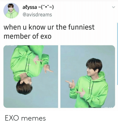 Memes, Exo, and Funniest: alyssa (  @avisdreams  when u know ur the funniest  member of exo EXO memes