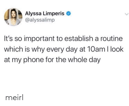 Important: Alyssa Limperis  @alyssalimp  It's so important to establish a routine  which is why every day at 10am I look  at my phone for the whole day meirl