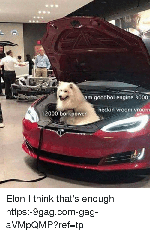9gag, Memes, and 🤖: am goodboi engine 3000  heckin vroom vroom  12000 borkpower Elon I think that's enough https:-9gag.com-gag-aVMpQMP?ref=tp
