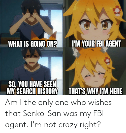 Im Not: Am I the only one who wishes that Senko-San was my FBI agent. I'm not crazy right?