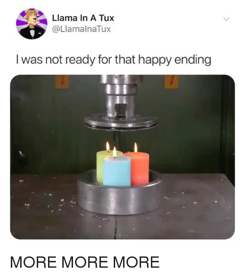 Happy, Girl Memes, and Ama: ama In A Tux  @LlamalnaTux  I was not ready for that happy ending MORE MORE MORE