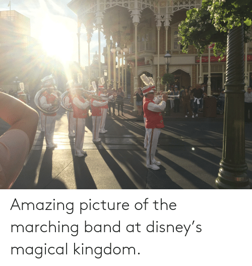 Marching: Amazing picture of the marching band at disney's magical kingdom.