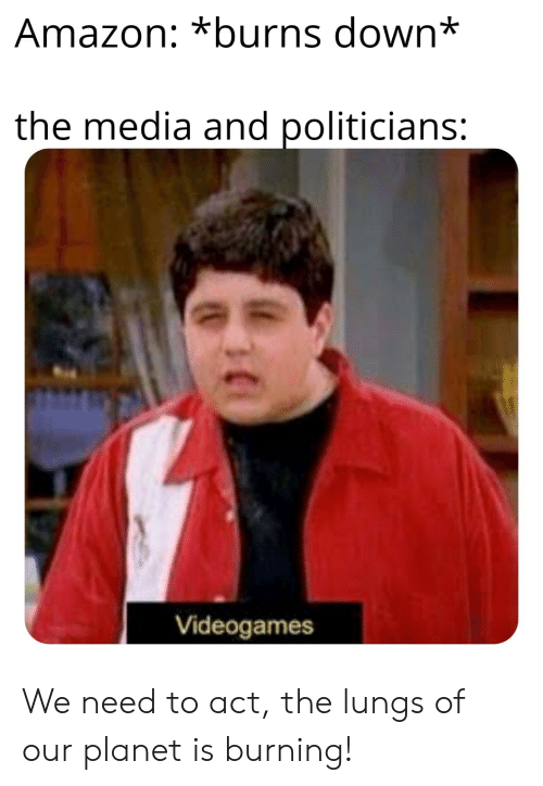 Amazon, Dank Memes, and Politicians: Amazon: *burns down*  the media and politicians:  Videogames We need to act, the lungs of our planet is burning!