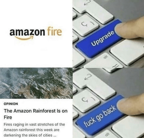 Skies: amazon fire  Upgrade  OPINION  The Amazon Rainforest Is on  Fire  Fires raging in vast stretches of the  Amazon rainforest this week are  fuck go back  darkening the skies of cities
