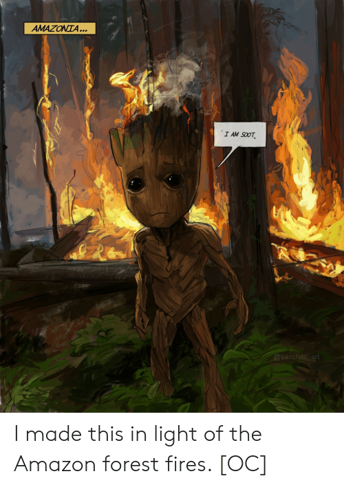 Amazon, Art, and Forest: AMAZONTA...  I AM SOOT  @sanchitc_art I made this in light of the Amazon forest fires. [OC]