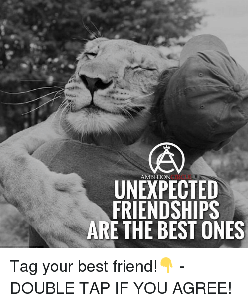 Best Friend, Memes, and Ambition: AMBITION  UNEXPECTED  FRIENDSHIPS  ARE THE BEST ONES Tag your best friend!👇 - DOUBLE TAP IF YOU AGREE!
