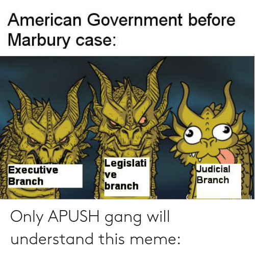 judicial branch: American Government before  Marbury case:  Legislati  ve  branch  Judicial  Branch  Executive  Branch Only APUSH gang will understand this meme: