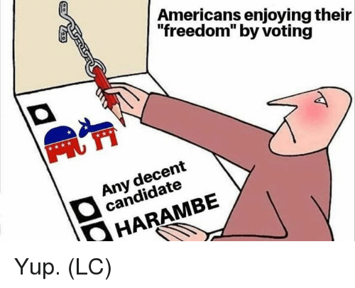 "Memes, Freedom, and Harambe: Americans enjoying their  ""freedom"" by voting  Any decent  candidate  HARAMBE Yup. (LC)"