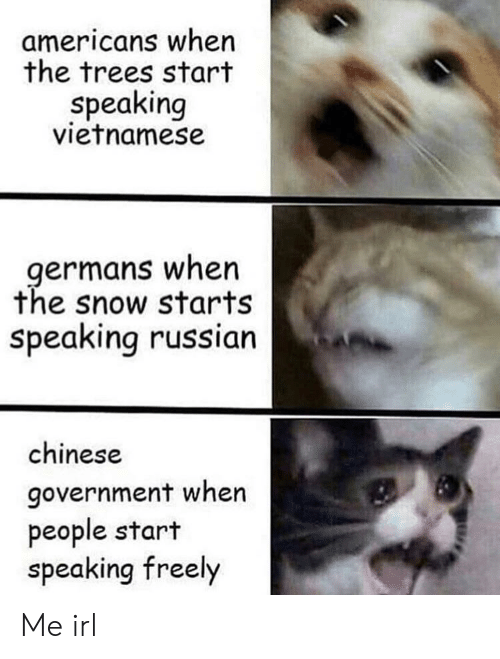 Chinese, Snow, and Trees: americans when  the trees start  speaking  vietnamese  germans when  the snow starts  speaking russian  chinese  government when  people start  speaking freely Me irl