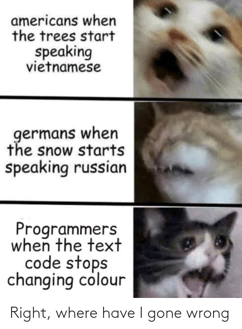 Snow: americans when  the trees start  speaking  vietnamese  germans when  the snow starts  speaking russian  Programmers  when the text  code stops  changing colour Right, where have I gone wrong