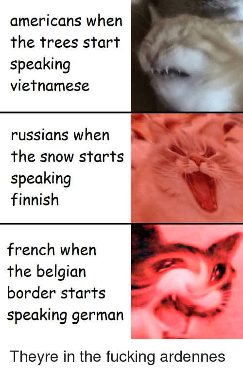 Belgian: americans when  the trees start  speaking  vietnamese  russians when  the snow starts  speaking  finnish  french wh  the belgian  border starts  speaking germarn Theyre in the fucking ardennes