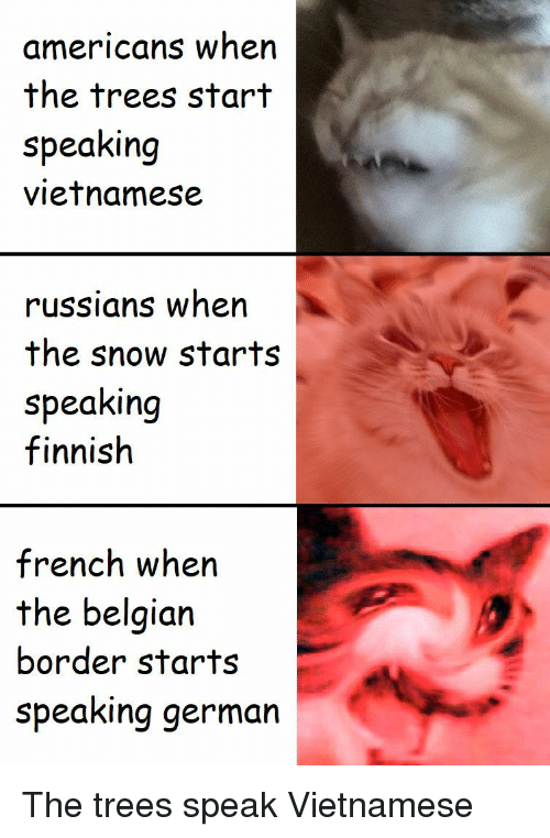 Belgian: americans when  the trees start  speaking  vietnamese  russians when  the snow starts  speaking  finnish  french when  the belgian  border starts  speaking germarn The trees speak Vietnamese