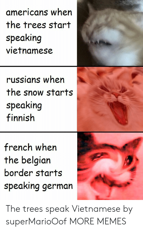 Belgian: americans when  the trees start  speaking  vietnamese  russians when  the snow starts  speaking  finnish  french when  the belgian  border starts  speaking germarn The trees speak Vietnamese by superMarioOof MORE MEMES