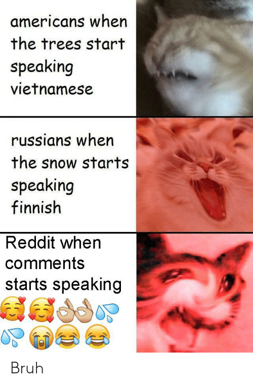 russians: americans when  the trees start  speaking  vietnamese  russians when  the snow starts  speaking  finnish  Reddit when  comments  starts speaking Bruh