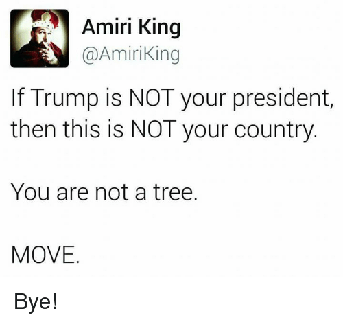 Memes, Tree, and Trump: Amiri King  Amiri ing  If Trump is NOT your president,  then this is NOT your country  You are not a tree.  MOVE Bye!