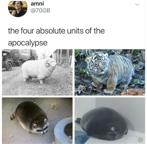 Apocalypse, The Four, and Units: amni  @70GB  the four absolute units of the  apocalypse