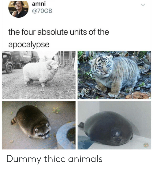 dummy: amni  @70GB  the four absolute units of the  apocalypse Dummy thicc animals