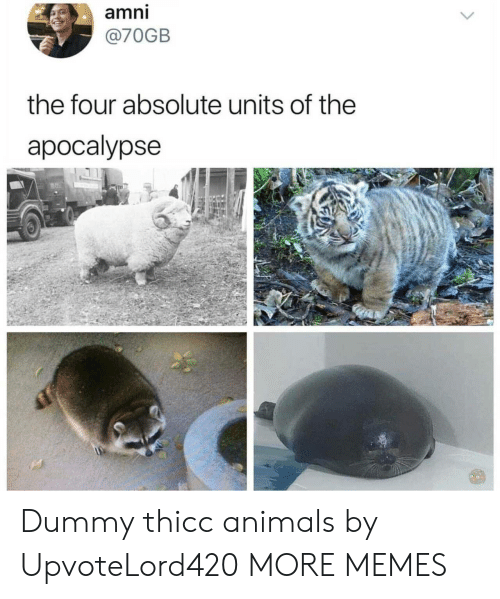 dummy: amni  @70GB  the four absolute units of the  apocalypse Dummy thicc animals by UpvoteLord420 MORE MEMES