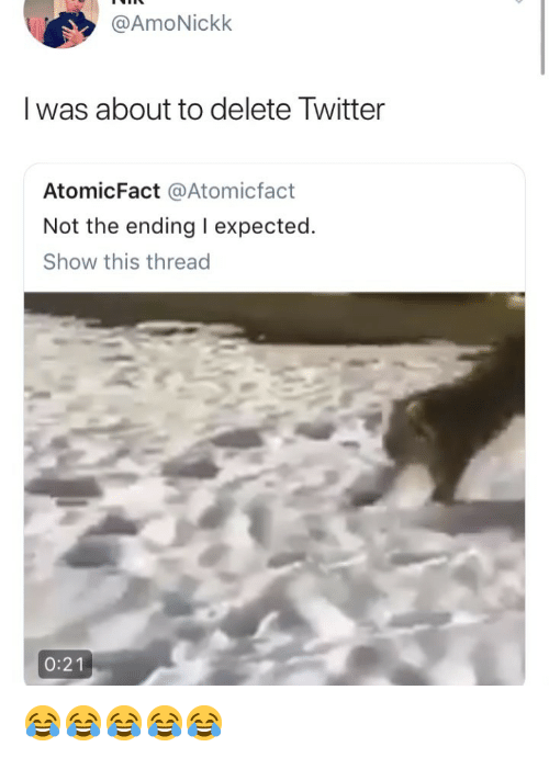 Twitter, Girl Memes, and Show: @AmoNickk  I was about to delete Twitter  AtomicFact @Atomicfact  Not the ending I expected.  Show this thread  0:21 😂😂😂😂😂