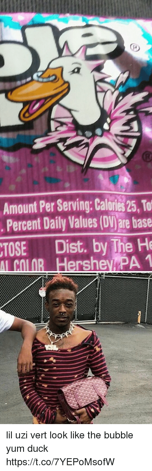 Funny, Duck, and Hershey: Amount Per Serving Calories 25, To  Percent Daily Values (DV)are base  Dist. by The He  COLOR Hershey PA 1 lil uzi vert look like the bubble yum duck https://t.co/7YEPoMsofW
