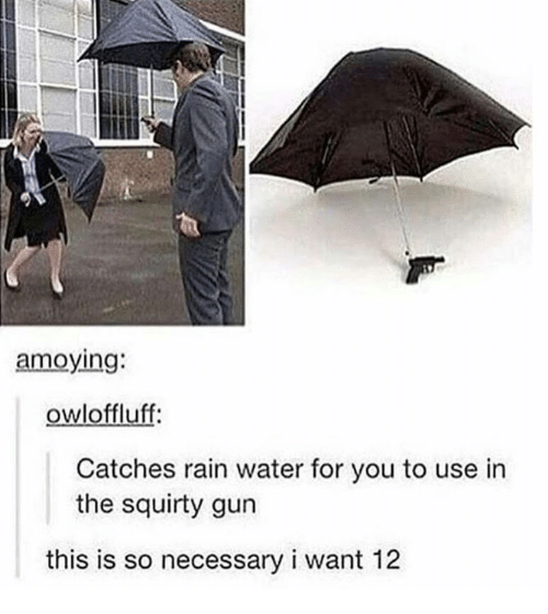 Rain, Water, and Gun: amoying  owloffluff:  Catches rain water for you to use in  the squirty gun  this is so necessary i want 12