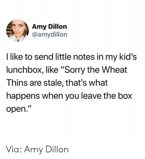 "Dank, Sorry, and Kids: Amy Dillon  @amydillon  I like to send little notes in my kid's  lunchbox, like ""Sorry the Wheat  Thins are stale, that's what  happens when you leave the box  open."" Via: Amy Dillon"