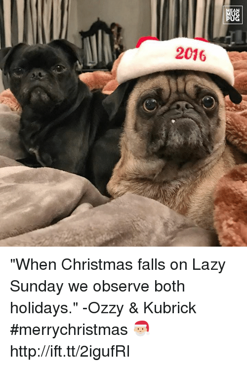 "Lazy, Memes, and Laziness: AN  2016  NGG  阳 ""When Christmas falls on Lazy Sunday we observe both holidays."" -Ozzy & Kubrick #merrychristmas 🎅🏼 http://ift.tt/2igufRI"