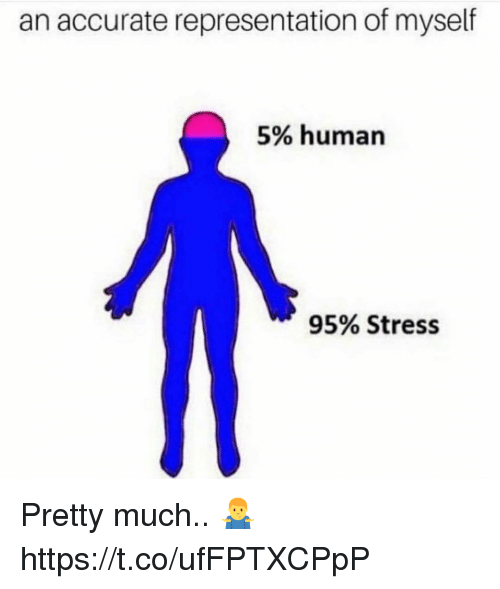 Accurate Representation, Human, and Stress: an accurate representation of myself  5% human  95% Stress Pretty much.. 🤷♂️ https://t.co/ufFPTXCPpP