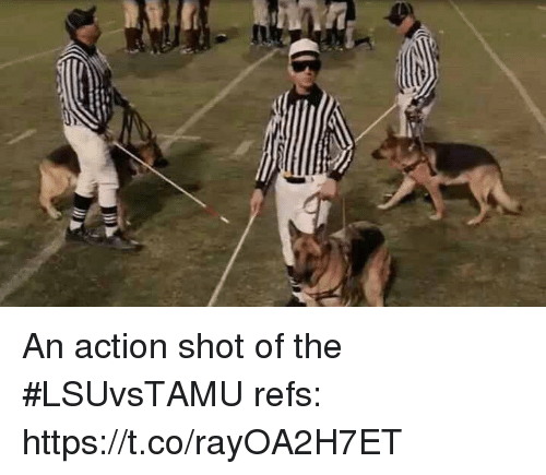 Sports, Action, and Shot: An action shot of the #LSUvsTAMU refs: https://t.co/rayOA2H7ET