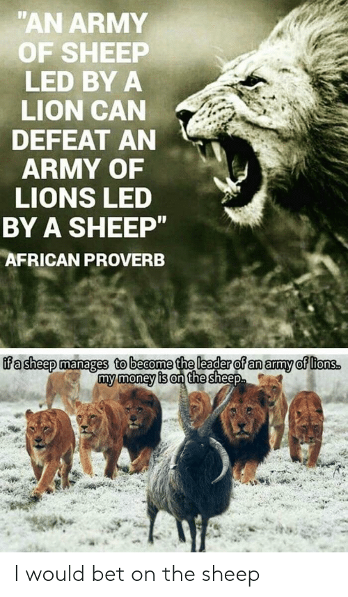 Money, Army, and Lion: AN ARMY  OF SHEEP  LED BY A  LION CAN  DEFEAT AN  ARMY OF  LIONS LED  BY A SHEEP  AFRICAN PROVERB  ffa sheep manages to beaome the leader of an amy of ltonss  my money is on the sheep I would bet on the sheep
