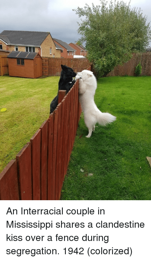 Interracial, Kiss, and Mississippi: An Interracial couple in Mississippi shares a clandestine kiss over a fence during segregation. 1942 (colorized)