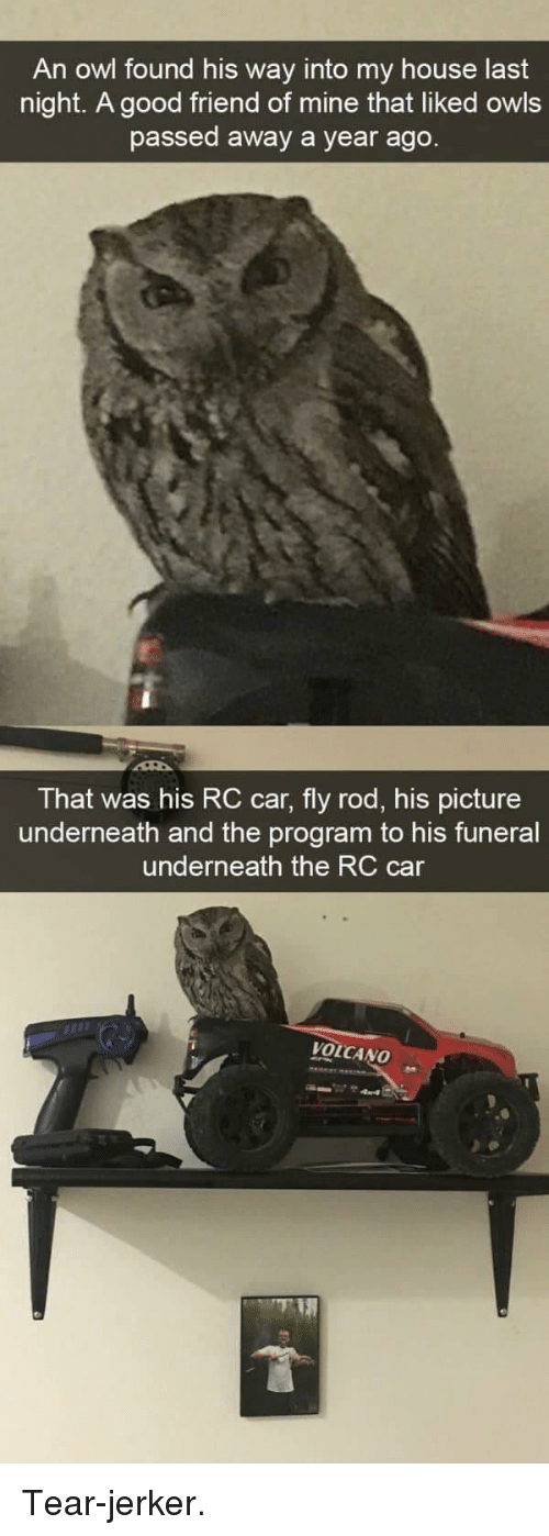 My House, Good, and House: An owl found his way into my house last  night. A good friend of mine that liked owls  passed away a year ago  That was his RC car, fly rod, his picture  underneath and the program to his funeral  underneath the RC car  VOLCANO Tear-jerker.