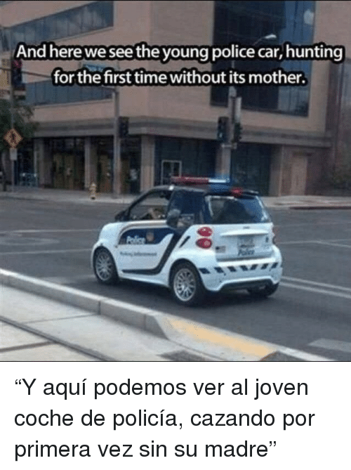"""Police, Hunting, and Time: And here we see the young police car, hunting  for the first time without its mother. """"Y aquí podemos ver al joven coche de policía, cazando por primera vez sin su madre"""""""