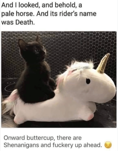 Memes, Shenanigans, and Death: And I looked, and behold, a  pale horse. And its rider's name  was Death.  Onward buttercup, there are  Shenanigans and fuckery up ahead.
