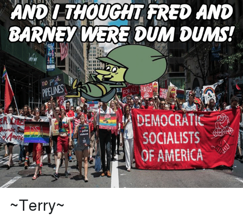 Democratic Socialists Of America: AND I THOUGHT FRED AND  BARNEY WERE DUM DUMS!  DEMOCRATIC  SOCIALISTS  OF AMERICA ~Terry~