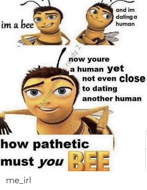 Youre A: and im  dating a  human  im a bee  now youre  a human yet  not even close  to dating  another human  how pathetic  BEE  must you EE  Maize mees reddy 2! me_irl
