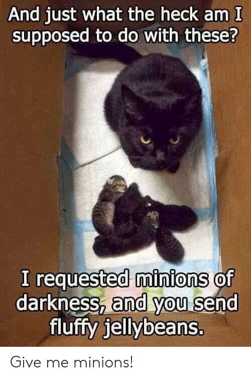 Minions, Darkness, and Fluffy: And just what the heck am I  supposed to do with these?  I requested minions of  darkness, and you send  fluffy jellybeans. Give me minions!