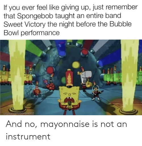 no: And no, mayonnaise is not an instrument