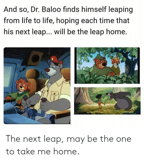 Life, Memes, and Home: And so, Dr. Baloo finds himself leaping  from life to life, hoping each time that  his next leap... will be the leap home. The next leap, may be the one to take me home.
