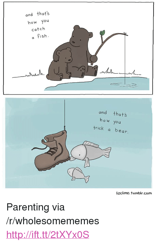 """Lizclimo Tumblr: and thats  how you  catch  a fish  and thats  ho w you  trick a bear  lizclimo. tumblr.com <p>Parenting via /r/wholesomememes <a href=""""http://ift.tt/2tXYx0S"""">http://ift.tt/2tXYx0S</a></p>"""