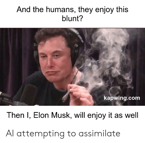 Kapwing: And the humans, they enjoy this  blunt?  kapwing.com  Then I, Elon Musk, will enjoy it as well AI attempting to assimilate