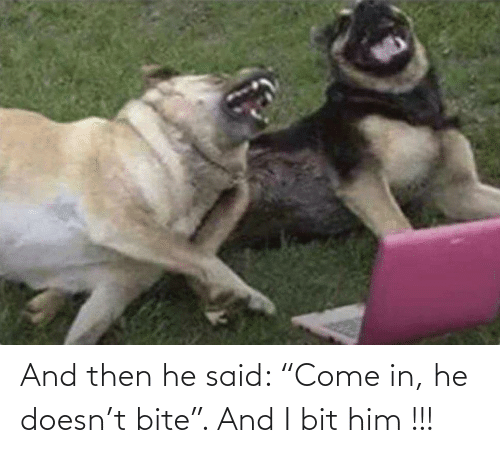 """Bit: And then he said: """"Come in, he doesn't bite"""". And I bit him !!!"""