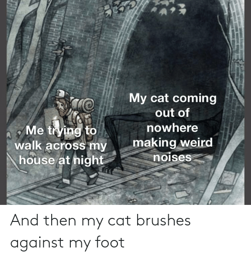 foot: And then my cat brushes against my foot