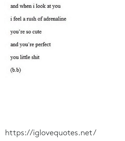 Rush: and when i look at you  i feel a rush of adrenaline  you're so cute  and you're perfect  you little shit  (b.b) https://iglovequotes.net/