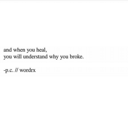 You Will: and when you heal,  you will understand why you broke  p.c. // wordrx