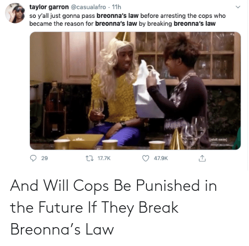 cops: And Will Cops Be Punished in the Future If They Break Breonna's Law
