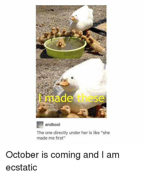 "One Direction, Tumblr, and Her: andkool  The one directly under her is like ""she  made me first"" October is coming and I am ecstatic"