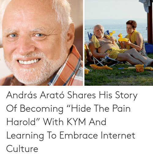 "hide: András Arató Shares His Story Of Becoming ""Hide The Pain Harold"" With KYM And Learning To Embrace Internet Culture"
